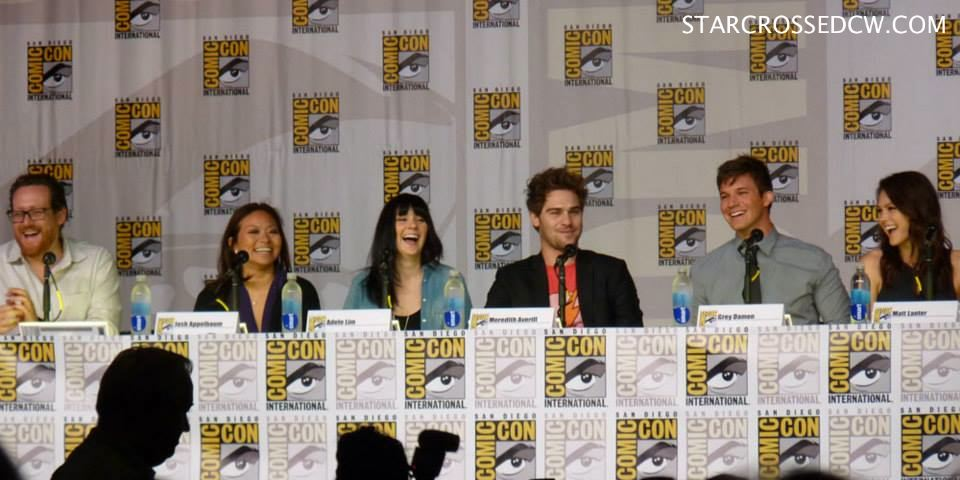 Star-Crossed panel